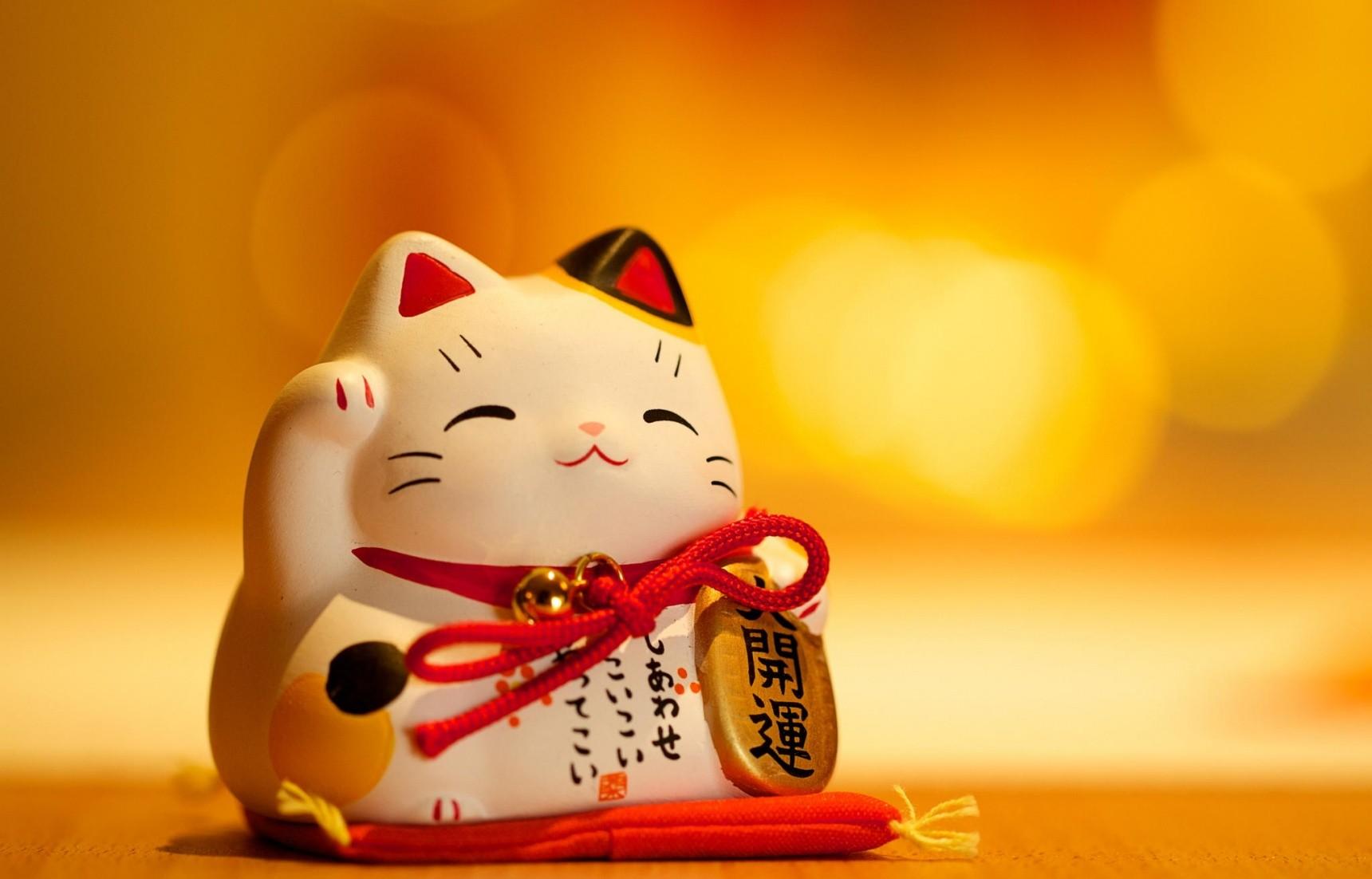 5 điều thú vị về chú mèo thần tài Maneki Neko