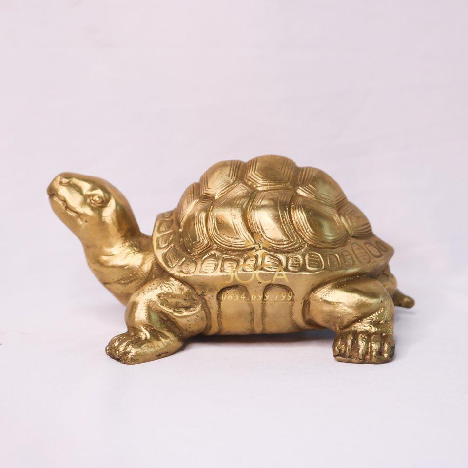 Biểu tượng rùa trong phong thủy điều bạn cần biết